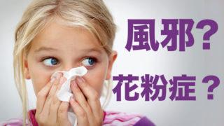 画像:風邪?花粉症?